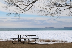 Sandbanks Picnic Table Winter #3367