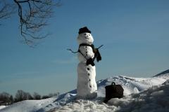 Snowman Camera #1669