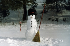 Snowman Frosty #432