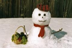 Snowman Grapes #332