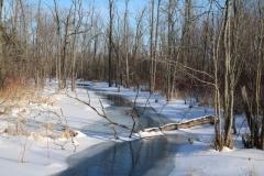 Stream Winter #3426
