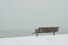 Wellington Beach Bench Winter #3462