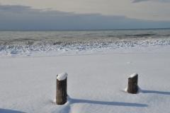 Wellington Beach Posts Winter #3465