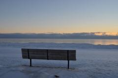 Wellington Bench Dark Winter #3468