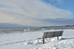 Wellington Bench Winter #3469